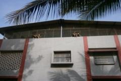 sisters-houses2